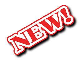 Risultato immagini per New